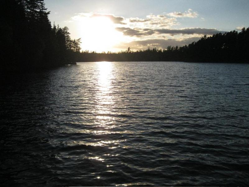 Hier in het Försjön zit forel